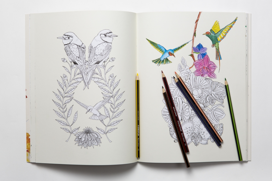 Through Her Debut Colouring Book Birdtopia Illustrator Daisy Fletcher Offers A Curious And Surreal Black White Paradise Where Birds Can Be As Small