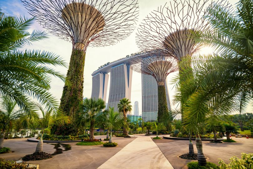 The Supertree at Gardens by the Bay. Image courtesy of [Adobe Stock](https://stock.adobe.com/)