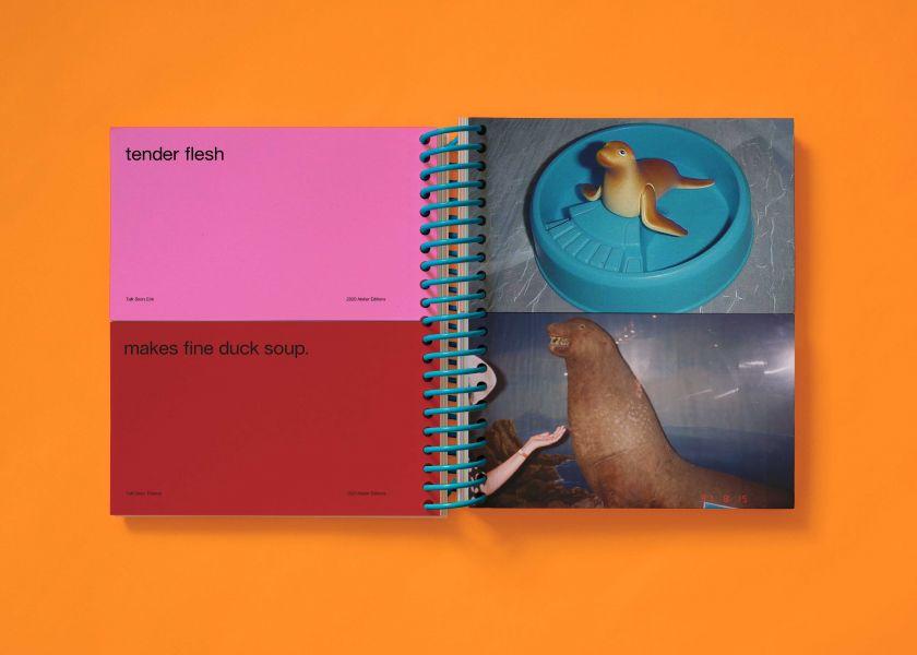 Talk Soon is a Surrealist photo book borne from quarantine
