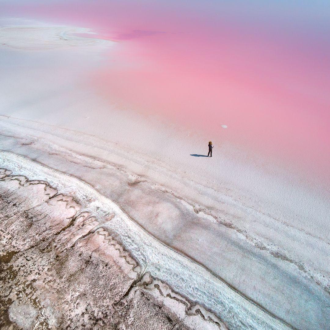At the Pink Planet © Yevhen Samuchenko, Ukraine, Shortlist, Professional, Natural World & Wildlife, 2020 Sony World Photography Awards