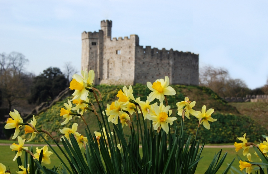 Cardiff Castle. Image Credit: [Shutterstock.com](http://www.shutterstock.com/cat.mhtml?lang=en&search_source=search_form&version=llv1&anyorall=all&safesearch=1&searchterm=cardiff&search_group=#id=99038657&src=AQiN2ntVJB6hLcAVKGRKDw-1-14)