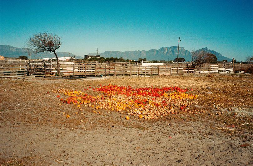 Farm J Keene © Justin Keene