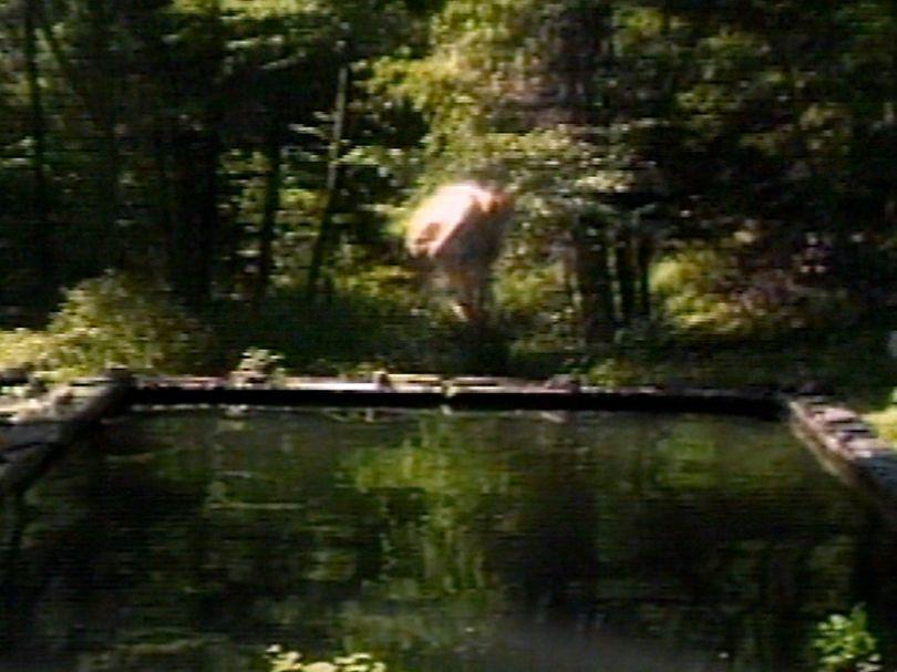 The Reflecting Pool, 1977–9 Videotape, color, mono sound; 7 minutes Performer: Bill Viola Courtesy Bill Viola Studio © Bill Viola Photo: Kira Perov