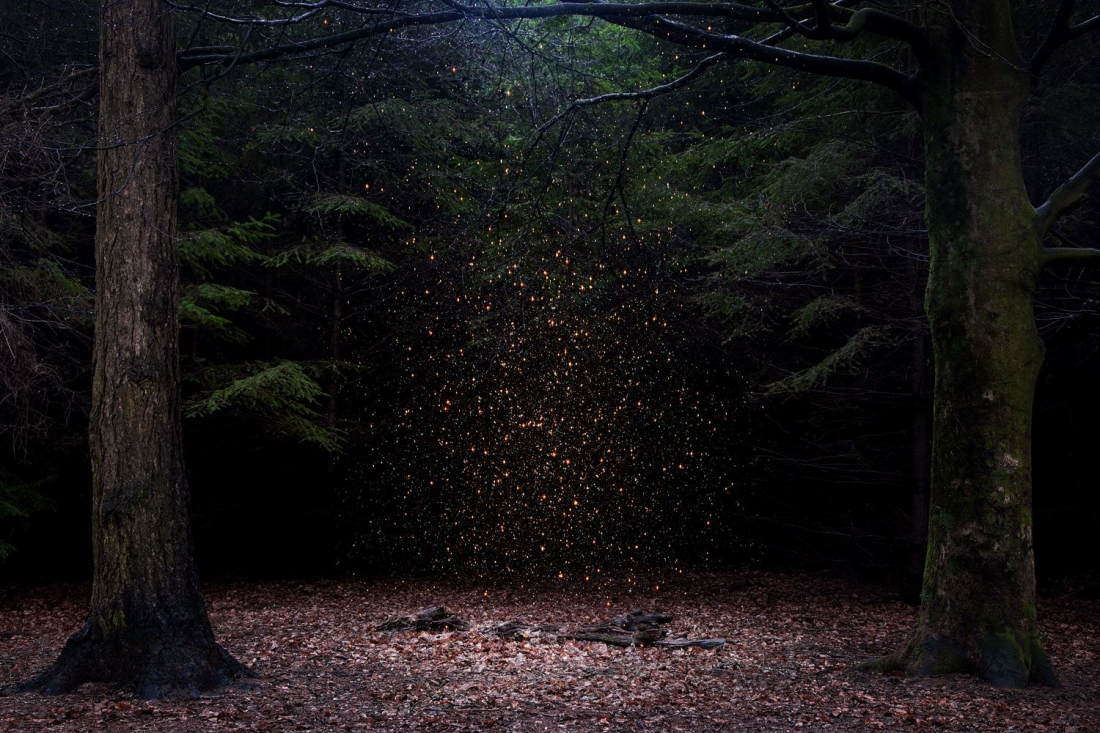 Stars 8, 2014. © Ellie Davies. Fine Art Single Image Winner, Magnum and LensCulture Photography Awards 2017