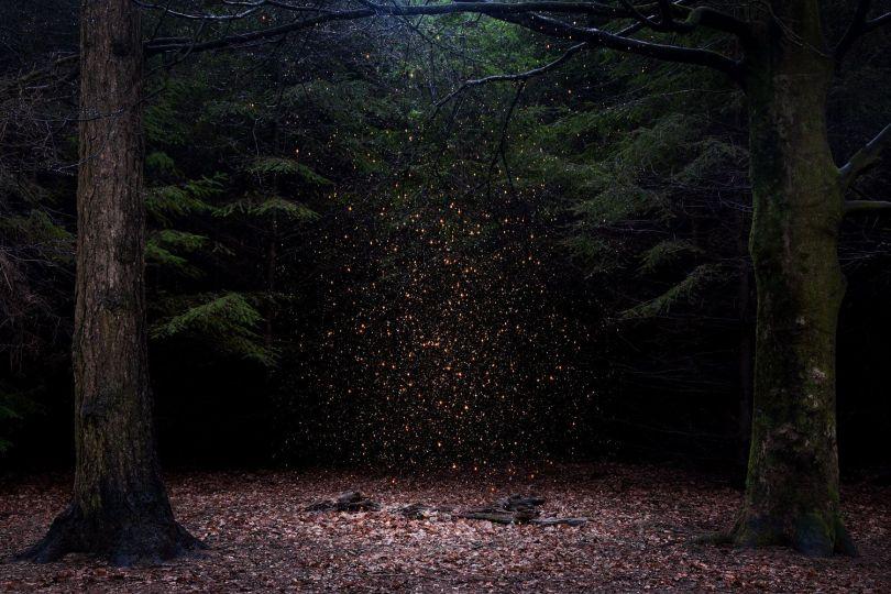 Stars 8, 2014. © Ellie Davies. Fine Art Single Image Winner, Magnum and LensCulture Photography Awards 2017