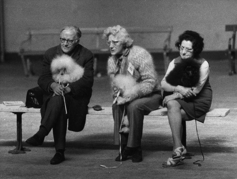 Shirley Baker, Manchester Dog Show