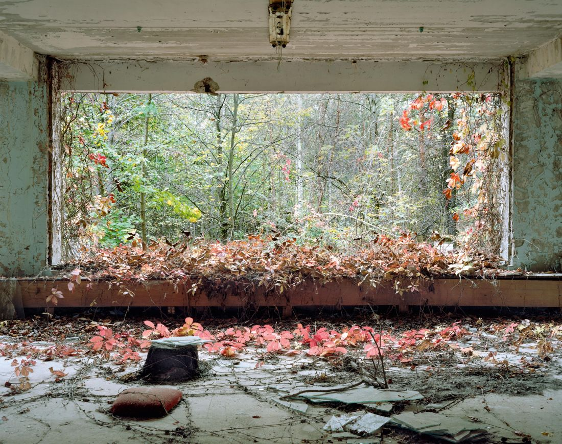 Lobby, Children's Hospital, October 2012. From the book, David McMillan: Growth and Decay - Pripyat and the Chernobyl Exclusion Zone, published by [Steidl Books](https://steidl.de/Books/Growth-and-Decay-Pripyat-and-the-Chernobyl-Exclusion-Zone-2326353746.html?SID=wNv9pBXee1bc) © David McMillan, 2018