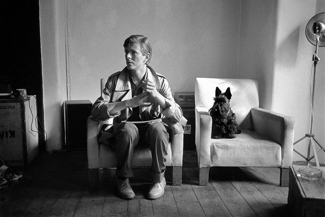 Seated Bowie with Dog by Brian Duffy courtesy of The Duffy Archive to exhibit at Art for Cure 2018 in aid of Breast Cancer Now. © Duffy courtesy of The Duffy Archive