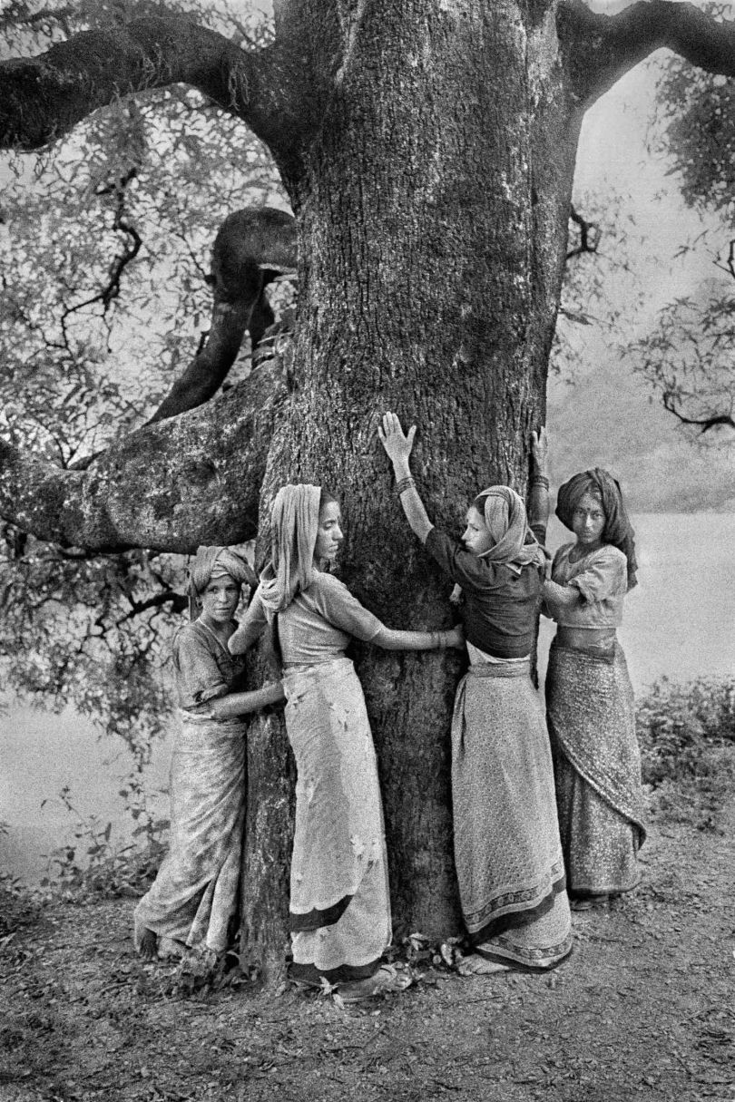 Pamela Singh, Tree Huggers of the Himalayas Series, 1994