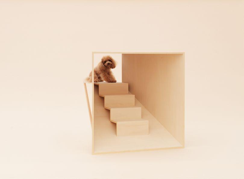 D-Tunnel by Kenya Hara for Teacup Poodle. Photo: Hiroshi Yoda.
