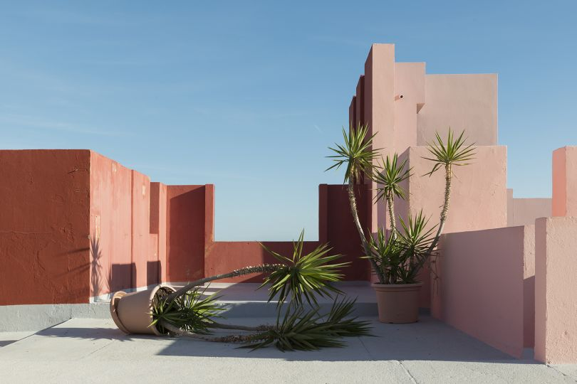 When arriving at the spot, it really felt like I interrupted these little palm trees while fighting, and they were pretending nothing happened. The photo was shot during my Christmas 2016 visit to Alicante, at Muralla Roja residential complex, designed by Ricardo Bofill | © Andrés Gallardo Albajar, Spain, Shortlist, Open, Still Life (open), 2017 Sony World Photography Awards