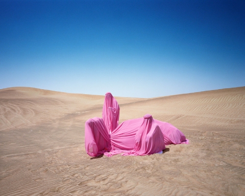 Scarlett Hooft Graafland, Still Life With Camel, 2016