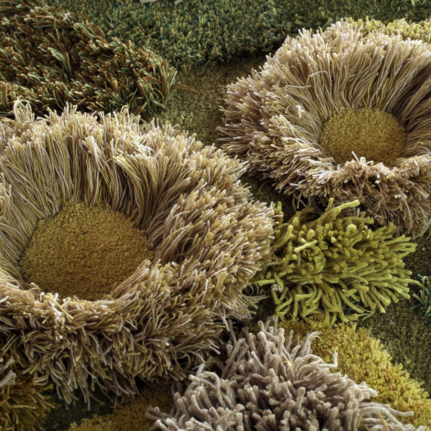 natural straw rugs rug artworks artist uses wool to weave carpet scenes of green and