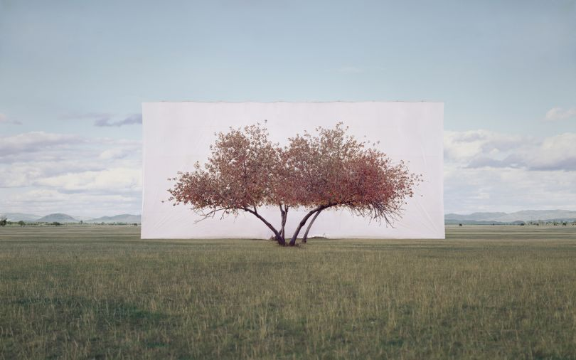 Myoung Ho Lee Tree... #2, 2012 © the artist 2020  Courtesy Myoung Ho Lee and Gallery Hyundai