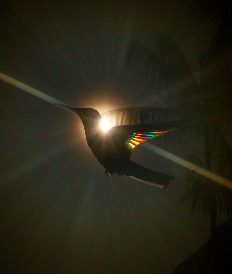 Divine Light © Christian Spencer