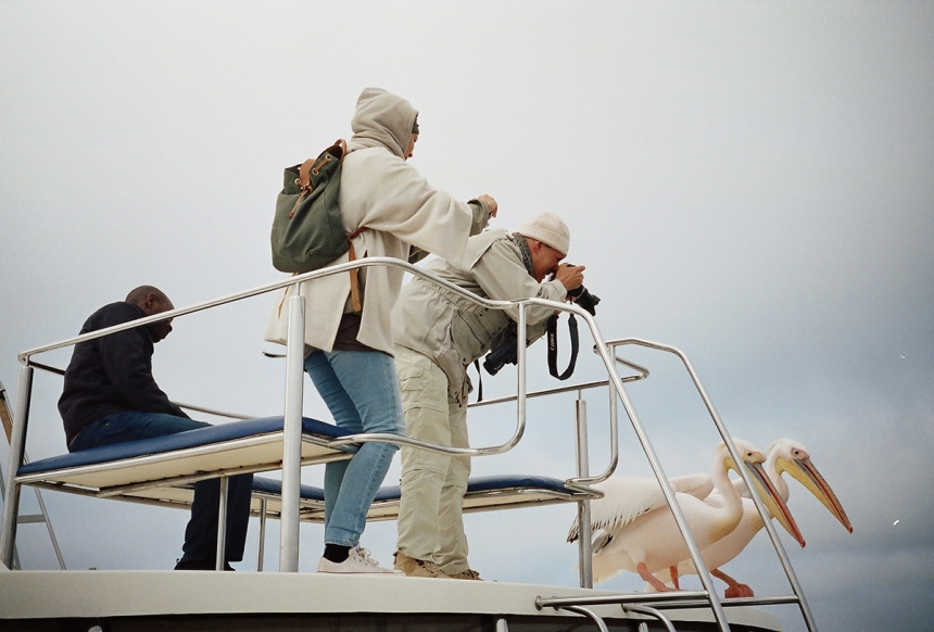 The Tourists and the Pelicans - Elie Kauffmann: This photograph was taken in Walvis Bay, Namibia. This couple of pelicans were quite the attraction on the boat!  Two tourist were obstinate about those birds. (Open People)